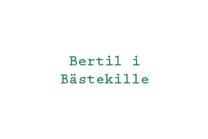 bertilibastekille_logo