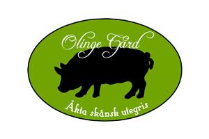 olinge_logo